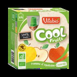 Cool fruits pomme VITABIO, 4 gourdes de 90g