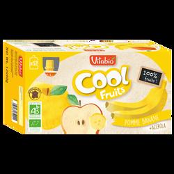 Cool fruits pomme banane acérola VITABIO, 12x90g