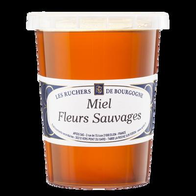Miel de fleurs sauvages LES RUCHERS DE BOURGOGNE, pot 500g