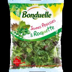Jeunes pousses(mâche,laitue verte/rouge,betterave rouge) et Roquette,BONDUELLE, sachet 145g