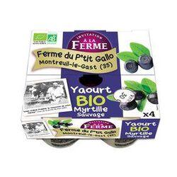 4 yaourts myrtille Ana Soiz