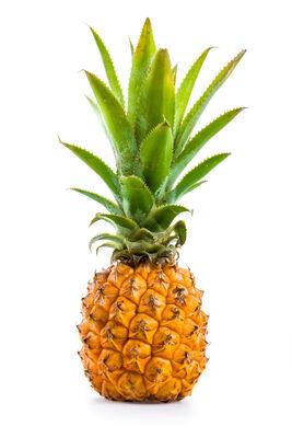 Ananas Victoria ILE MAURICE
