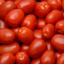 Tomate allongée roma, segment les allongées, BIO, calibre 57/67, catégorie 2, Espagne