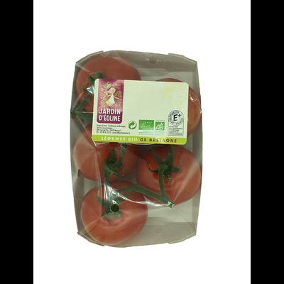 Tomate grappe, segment Les grappes, BIO, catégorie 2, France, barquette 600g