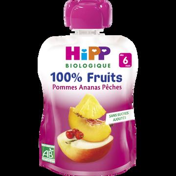 HiPP Gourde Pommes Ananas Pèches Bio Dès 6 Mois Hipp, 90g