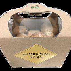 Champignon blond, BIO, France, barquette, 200g