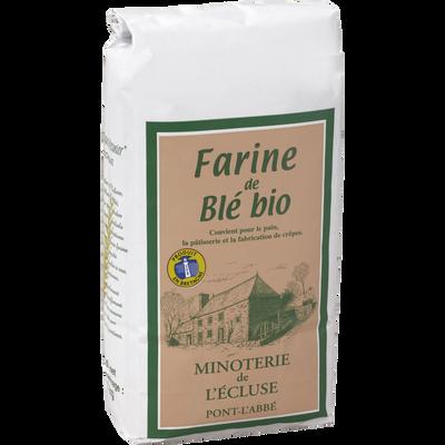 Farine de blé biologique MINOTERIE DE L'ECLUSE, 1kg