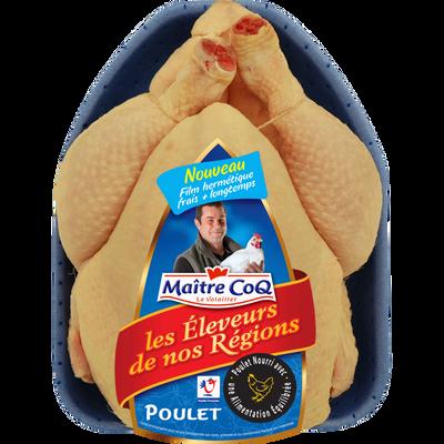 Poulet jaune Elevage de nos Régions, MAITRE COQ, France, 1 pièce