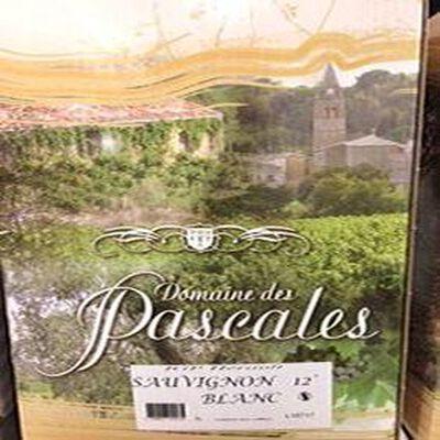 SAUVIGNON BLANC DOMAINE DES PASCALES 12° HERAULT CASSAN 5L
