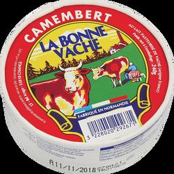 Camembert au lait pasteurisé PLAISIR DE ROY, 21% de MG, 240g