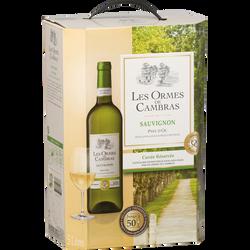 Vin blanc IGP Pays d'Oc Sauvignon LES ORMES DE CAMBRAS, fontaine à vinde 5l