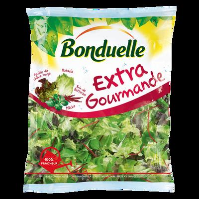 Extra gourmande (batavia,feuille de chêne,mâche,betterave), BONDUELLE,sachet 160g
