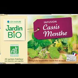 Infusion JARDIN BIO, Cassis Menthe, x20
