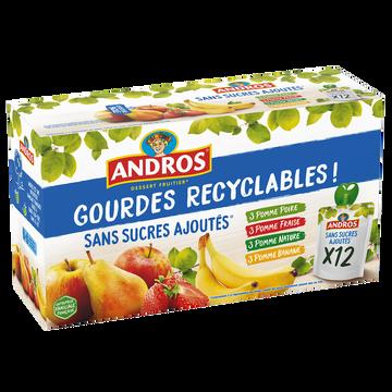 Andros Gourdes Panaché Sans Sucre Ajoutés Andros 12x90g
