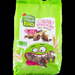 Céréales bio fourées au chocolat, Crok'fondant tout choco, TERRE ET CEREALES, sachet de 375g