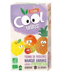Compote Pomme de Provence Mangue Ananas Acérola Vitabio 12 gourdes de 90g