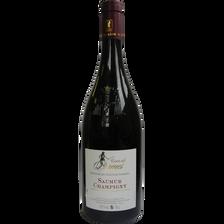 Vin rouge AOP Saumur Champigny Domaine des Hauts Sanziers cuvée des Dames, bouteille de 75cl