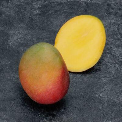Mangue kent, calibre 12, Mexique, barquette 1 fruit