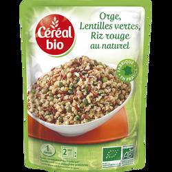 Doy orge riz rouge-lentilles vertes CEREAL BIO, 250g