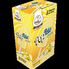 Bâtonnets à l'eau Pop'Polo citron MAISON DE LA GLACE,x5 350g