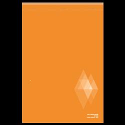 Bloc notes perforé U, seyes, 21x31,5 cm, 160 pages