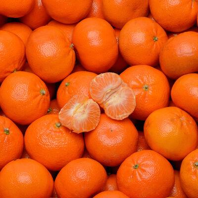 Mandarine Nadorcott, calibre 1, catégorie 1, Maroc