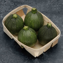 Courgette ronde, BIO, France, barquette 4 fruits