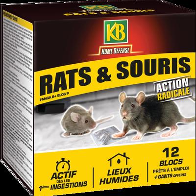 RAT SOURIS ETUI DE 12 BLOCS PRETS A L'EMPLOI 240G+GANTS OFFERTS