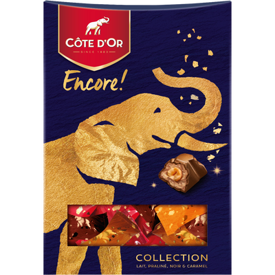 Chocolat mix encore COTE D'OR, 250g