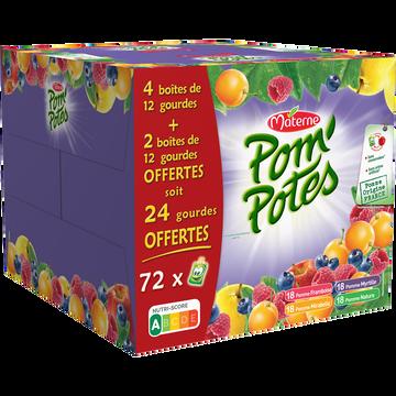 Materne Pom'potes Multivariétés Materne 4btesx12+2btesx12 Offertes
