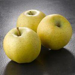 Pomme golden delicious vrac calibre 170/220 France