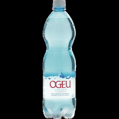 Eau minérale naturelle pétillante OGEU, bouteille de 1,25l