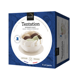 Glace Tentation vanille et caramel ERHARD, 500g
