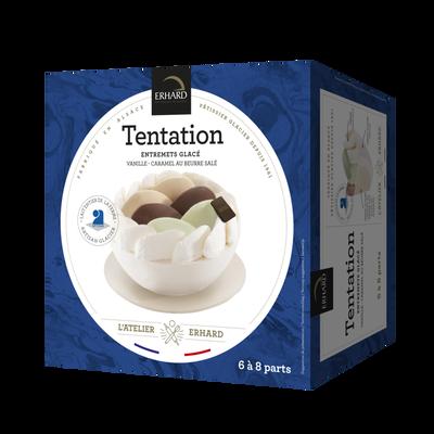 Glace Tentation vanille/caramel ERHARD 500g
