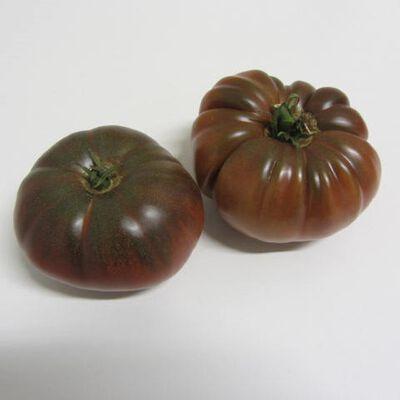Tomate noire de Crimée - France - Cat 1 - Cal 67/77 -