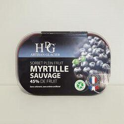 Sorbet myrtille HDG bac 750ml