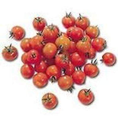Tomate cerise allongee origine france categorie 1