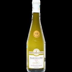 Vin blanc AOC Muscadet Sèvre & Maine sur lie Domaine fief de la gravelle, bouteille de 75cl
