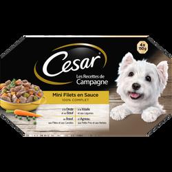 Barquettes pour chien en terrine recettes de campagne CESAR, 4x150g