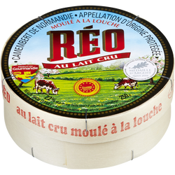 Camembert AOP au lait cru 22% de matière grasse REO, 250g