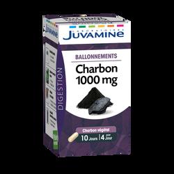 JUVAMINE CHARBON 1000 mg, Ballonnements, 40 gélules