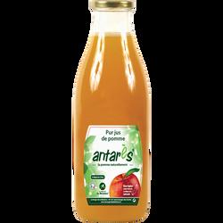 Pur jus de pomme d'antarès VERGER DE LA BLOTTIERE, bouteille en verrede 1l