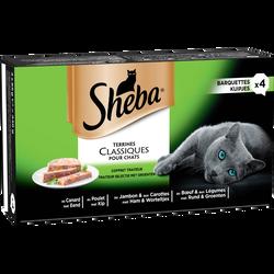 Coffret primeur terrine pour chat SHEBA, barquette de 4x85g