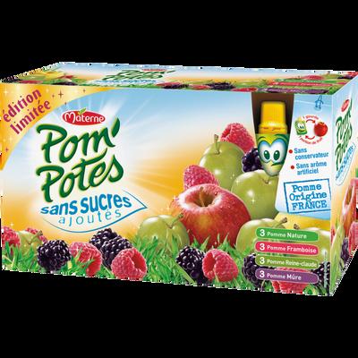 Pom'potes sans sucre ajouté multivariétés, MATERNE, 12 gourdes de 90g
