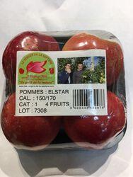 POMMES ELSTAR 4 FRUITS