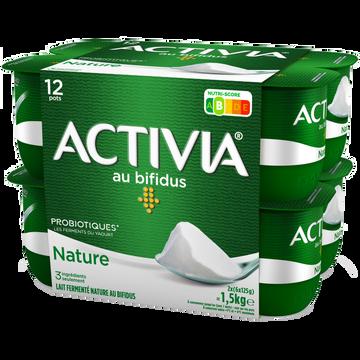Danone Yaourt Nature Bifidus Activia, 12x125g