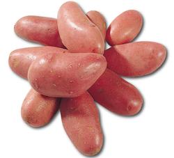 Pomme de terre rosabelle n/lavées 5kg+1kg offert cal.+35mm cat.1 France