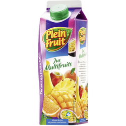 Jus à base de concentré multifruit Plein Fruit, brique de 1l