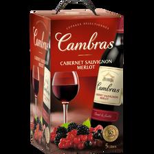 Vin d'Espagne Merlot cabernet sauvignon rouge CAMBRAS, fontaine à vin,5L