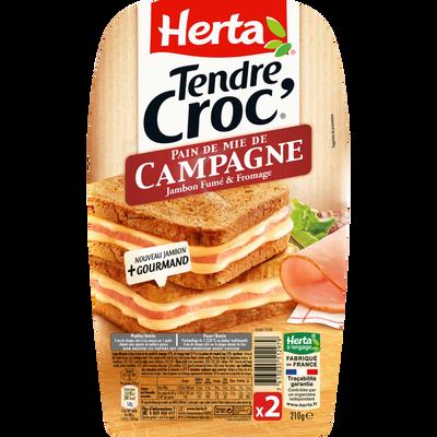 Tendre croc'pain de campagne HERTA, 210g